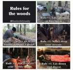 Rules for the Woods.jpg
